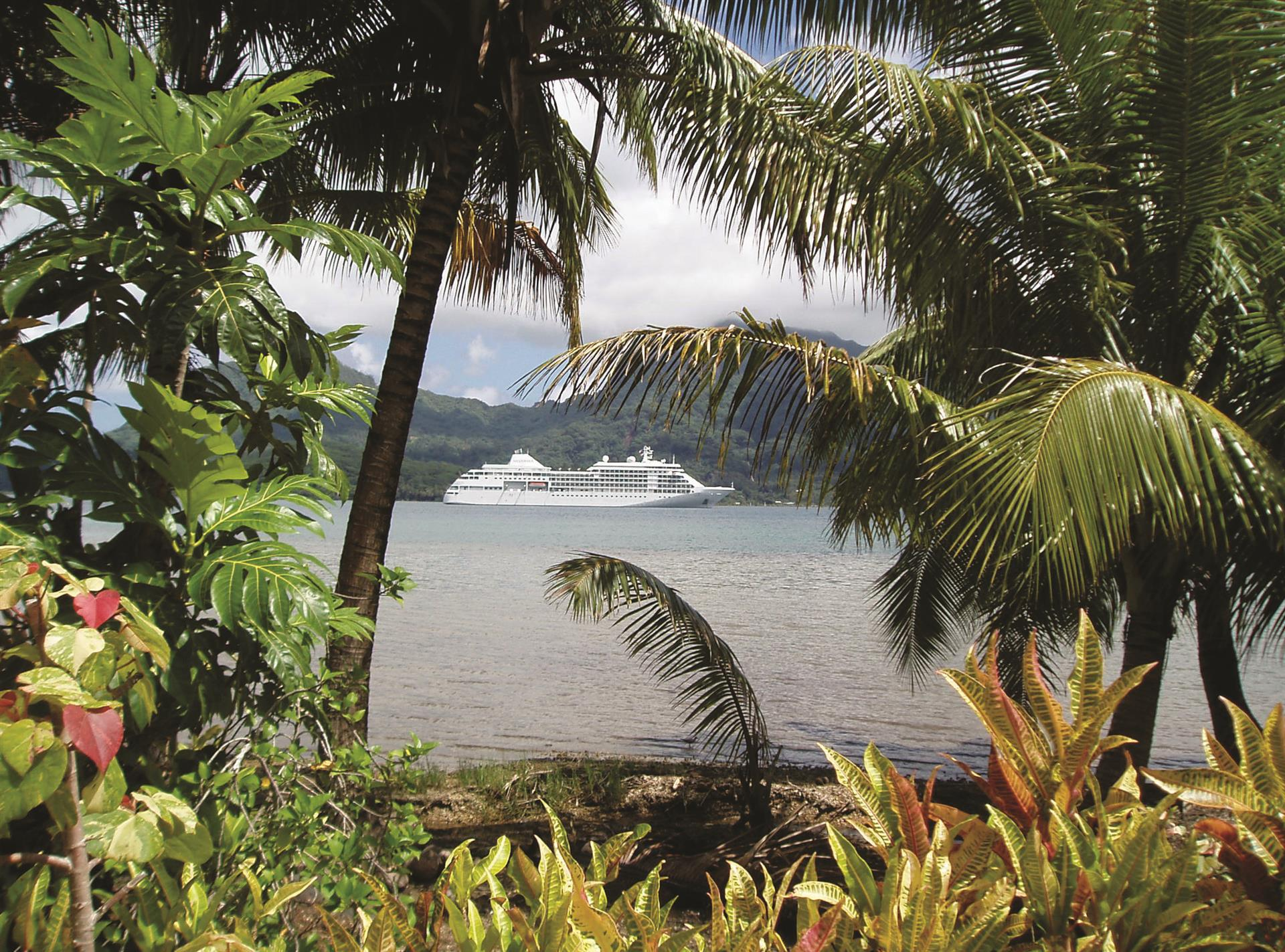 Caribbean Cruises November